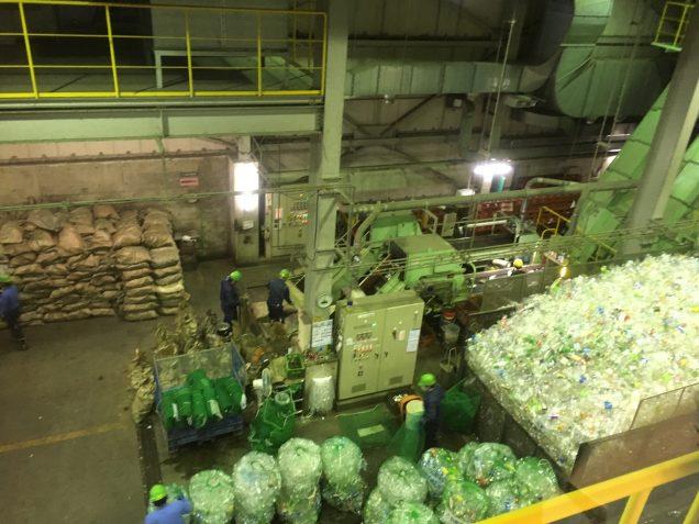 回収されたペットボトル。 柏リサイクルリボン館にて。